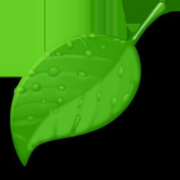 Coda concept artwork